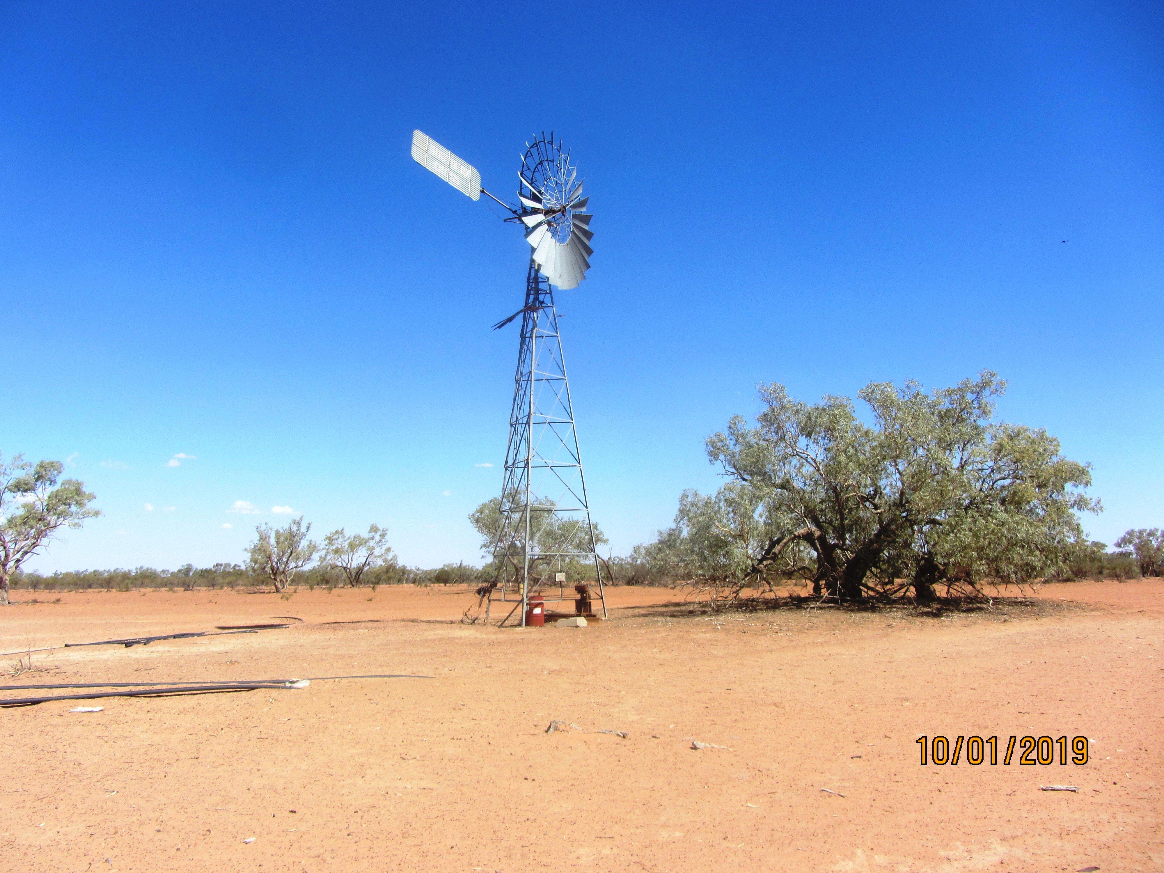 For Sale - Darling River livestock farm, Dunoak station