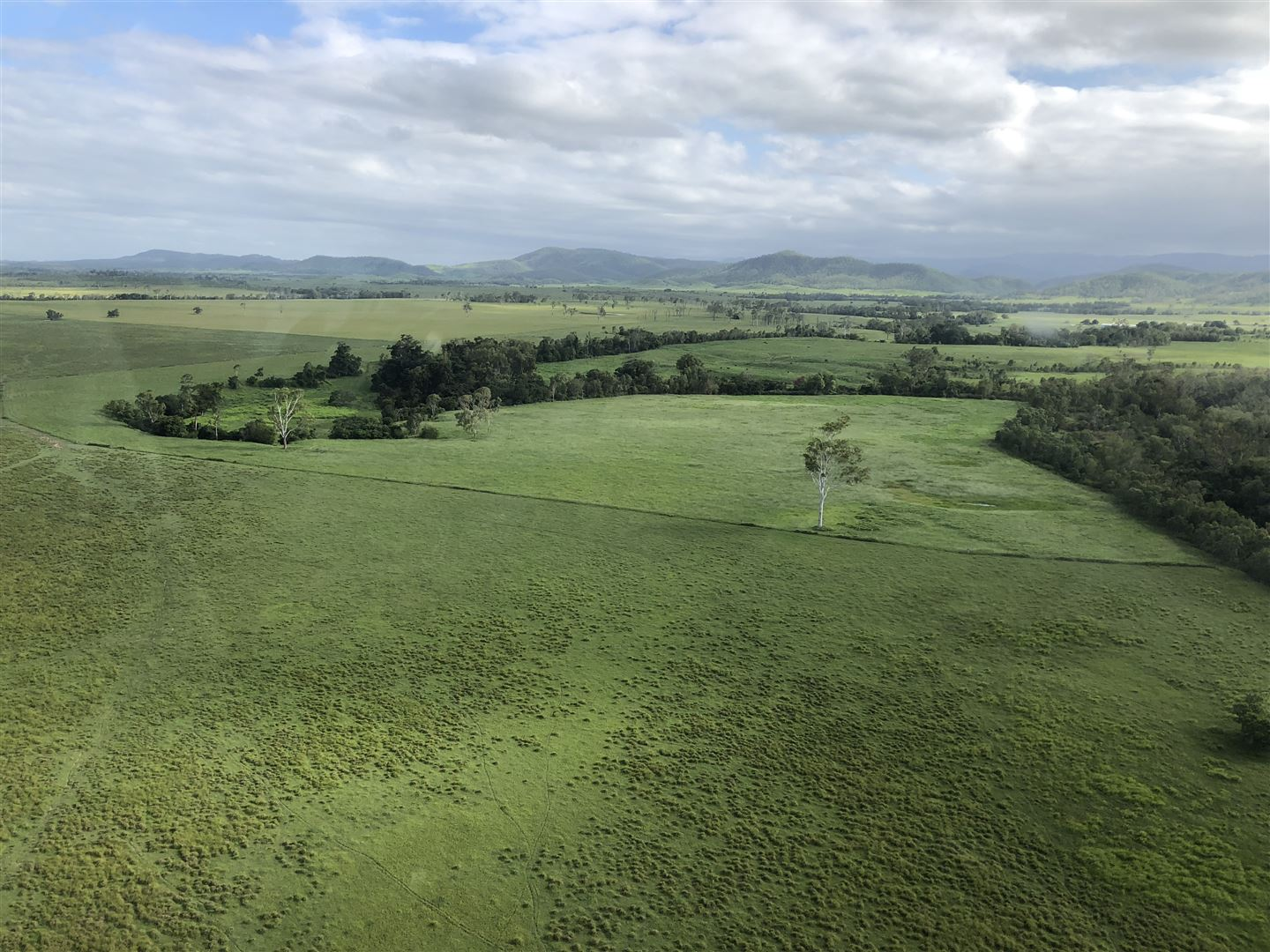 491-LHM3438-North-Queensland-Coast-Hinterland