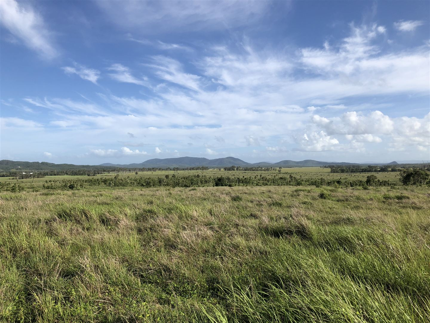 566-LHM3438-North-Queensland-Coast-Hinterland