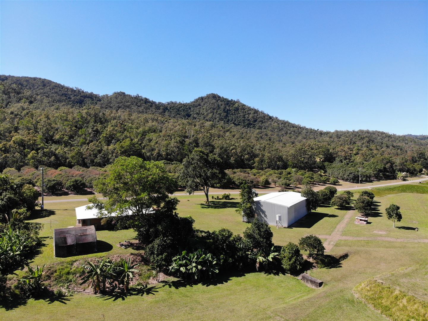 For sale - acreage hobby farm or orchard - Ingham Queensland