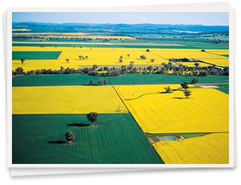 Photo of fields